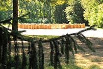 Neunkirchen - Stadtpark - 2013-07-20_10
