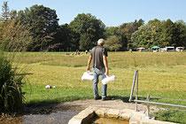 NK_Stadtpark_2013-09-07_044 - ...und zum Bestimmungsplatz...