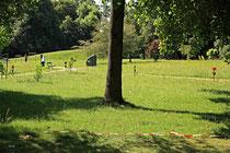 Neunkirchen - Stadtpark - 2013-07-20_39