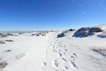 Schneeberg - 25.Oktober 2014_070 - Da geht es auch zur. Bergstation...
