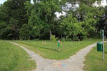 Neunkirchen - Stadtpark - 2013-07-20_41 - Blumenwiese