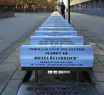 Donauplatte - 21.Oktober 2013