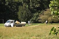 NK_Stadtpark_2013-09-07_005 - ...zu den fleißigen Männern.