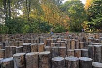 Neunkirchen - Stadtpark - 2013-10-15_39