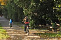 Neunkirchen - Stadtpark - 2013-10-15_19