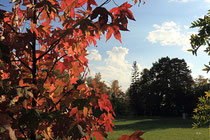 Neunkirchen - Stadtpark - 2013-10-15_43
