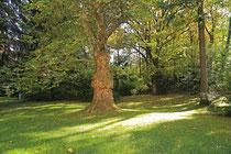 Neunkirchen - Stadtpark - 2013-10-15_13