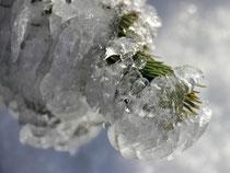 Schneeberg - 25.Oktober 2014_098 - ...und Eis...