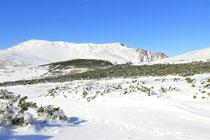 Schneeberg - 25.Oktober 2014_083 - ...bewundern wir abermals den Schneeberg...