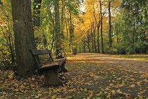 Neunkirchen - Stadtpark - 2013-10-15_26