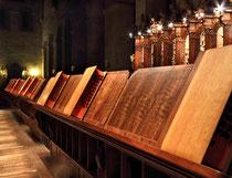 Stift Heiligenkreuz - 17.November 2014_090 - Am Abend zur Zeit der Vesper wirft die sinkende Sonne ihr Licht auf die betenden Mönche im Chorgestühl.