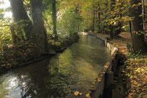 Neunkirchen - Stadtpark - 2013-10-15_28