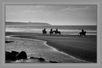 Cavaliers on the beach