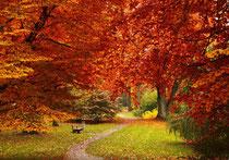 Stadtpark Lübeck im Herbst