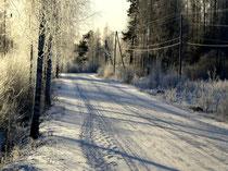 Tiefverschneite Wälder, stahlblauer Himmel, knackig kalte Temperaturen. Weg zu Ihrem kuscheligen Refugium auf der Insel Päijätsalo.
