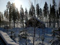Im Winter finden Sie bei uns viel Raum und Zeit für Aktivitäten in der Umgebung sowie Ruhe und Behaglichkeit im Mökki. Kommen Sie nach ausgedehnten Spaziergängen zurück in Ihr selbst bei arktischen Temperaturen gemütlich warmes zu Hause.