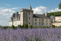 Chateau Villandry, Valle Loire