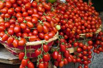 Tomaten-Variation