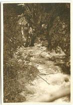 """""""Salvesenschlucht Tarrenz"""". Gelatinesilberabzug 6 x 9 cm; Privatphoto um 1925.  Inv.-Nr. vu609gs00028"""
