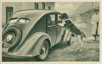 Bernhardiner und Steyr 100, Baujahr 1934. Rastertiefdruck 9 x 14 cm ohne Impressum, Herausgegeben wohl von den Steyr-Werken im Jahr des Produktionsbeginns 1934.  Inv.-Nr. vu914rtd00041