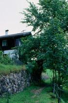 """Haus """"Bergheim"""" von Revieroberjäger Ludwig Rupprechter (gest. 1983) und Gattin Frieda beim Gasthof Kink. Farbdiapositiv 24x36mm; © Johann G. Mairhofer 1993.  Inv.-Nr. dc135kd5001.01_06"""