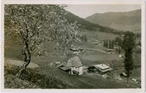 Inneralpbach, Gemeinde Alpbach im Winter. Gelatinesilberabzug 9 x 14 cm; kein Impressum; postalisch gelaufen 1931.  Inv.-Nr.  vu914gs00561