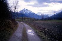Feldweg in Igls mit Serles und Habicht in den Stubaier Alpen. Farbdiapositiv 24x36mm; © Johann G. Mairhofer 1992.  Inv.-Nr. dc135fuRD147.1_07