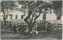 Ostern im Institut der Englischen Fräulein in Brixen, Altenmarktgasse 17. Lichtdruck 9 x 14 cm; Impressum: Verlag L. Helm, Dornbirn um 1910.  Inv.-Nr. vu914ld00121