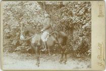 Infanterieoffizier in Paradeadjustierung auf seinem Dienstpferd aufgesessen. Gelatinesilberabzug auf Untersatzkarton 10,8 x 16,6 cm (Cabinet-Format); Impressum: G(ermano). Bendelli, Trento/Trient um 1895.  Inv.-Nr. vuCAB-00362