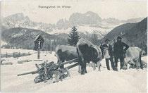 Winterliche Holzbringung im Gebiet der Rosengartengruppe, Südtirol. Lichtdruck 9x14cm; A. Figl & Co., Bozen um 1905.  Inv.-Nr. vu914ld00019