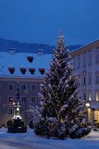 Weihnachtsbaum beim Marienbrunnen von 1877 mit neugotischer Statue am Unteren Stadtplatz in Kufstein, Tirol (1966 abgetragen, 1977 restauriert und wieder aufgestellt). Digitalphoto; © Johann G. Mairhofer 2017.  Inv.-Nr. 2DSC04740