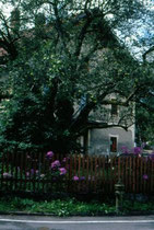 Hof SATTLER in Mitterolang. Farbdiapositiv 24x36mm;© Johann G. Mairhofer 1998.  Inv-Nr. dc135kn0239.02_31