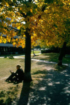 Studium im Park der ehem. Geisteswissenschaftlichen Fakultät an der Franz-Gschnitzer-Promenade in Innsbruck. Farbdiapositiv 24 x 36 mm;  © Johann G. Mairhofer um 1995.  Inv.-Nr. dc135kn0225.01_02