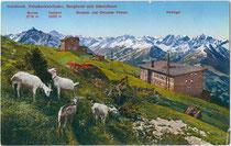 Ziegen bei der Bergstation der Patscherkofelbahn von Arch. Hans Fessler (1896 - 1973) aus gegen Stubaier Alpen. Photochromdruck 9 x 14 cm (Bergnamenkarte); Impressum: K(arl). Redlich, Innsbruck um 1930.  Inv.-Nr. vu914pcd00239