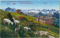 Stubaier Alpen von der Bergstation der Patscherkofelbahn von Arch. Hans Fessler (1896 - 1973) aus. Photochromdruck 9 x 14 cm (Bergnamenkarte); Impressum: K(arl). Redlich, Innsbruck um 1930.  Inv.-Nr. vu914pcd00239