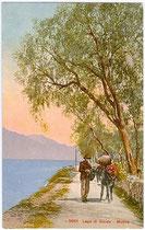 Tragtiertransport mit Esel auf der Gardesana Orientale (Östliche Gardaseeuferstraße). Photochromdruck 9 x 14 cm; Impressum: Edition Photoglob, Zürich um 1910.  Inv.-Nr. vu914pcd00071