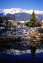Teich im Botanischen Garten der Universität Innsbruck, Sternwartestraße 15 gegen die Nordkette. Farbdiapositiv 24 x 36 mm; © Johann G. Mairhofer 1992.  Inv.-Nr. dc135fuRD147.1_33