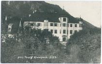 Ansitz ACHENRAIN (auch als Schloss TAXIS bezeichnet) in Kramsach, Bezirk Kustein. Heliogravüre 9x14cm; Georg Angerer, Schwaz; postalisch gelaufen 1927.  Inv.-Nr. .  Inv.-Nr. vu914hg00009