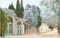 Portal vom Schloss und botanischen Garten des Erzherzog Albrecht von Österreich-Teschen (1817-1895) in Arco; seit 1993 vom Museo Tridentino di Scienze Naturali geführt. Farbautotypie 9 x 14 cm ohne Impressum um 1910.  Inv.-Nr. vu914fat00092