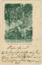 Denkmal für Walther von der Vogelweide in Innsbruck, St. Nikolaus im Waltherpark zwischen Innallee und Innstraße. Impressum: Kunsthandlung Lorenz Neurauter, Innsbruck um 1900.  Inv.-Nr. vu914ld00195