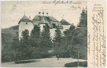 Schloss Lebenberg mit Parkanlage. Lichtdruck 9 x 14 cm; Impressum: Verlag von M. Ritzer, Kitzbühel um 1900.  Inv.-Nr. vu914ld00187