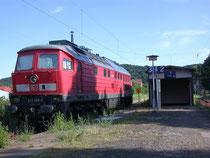"DB Lok 233 295 hat sich nach Blankenburg ""verirrt"", 07.07.2008"
