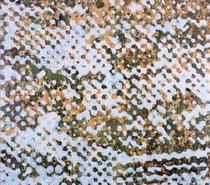 """O.T.(""""Diffusion""""), 2002/2009, Öl auf Seidenpapier und Leinwand, 195 x 222 cm"""