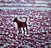 """""""Carmine Dog"""", 2007, Öl auf Leinwand, 70 x 75cm"""
