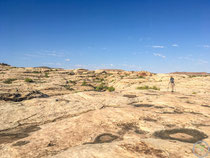 auf dem riesigen Plateau