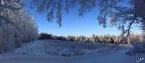 Clairière sous la neige