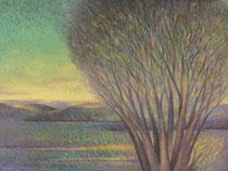 Sacred Trees #6