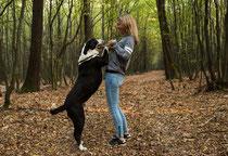 People - Outdoor - Natur - Hund
