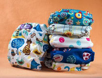 Cloth Nappies Hippybottomus Suisse All-in-one: Mixed