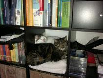 Waltraud (LILLY) und Emil